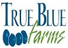 TrueBlue100x70